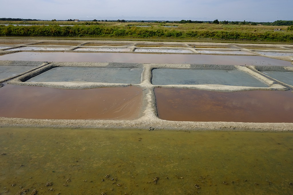 salt farm in les sables dolonne west france