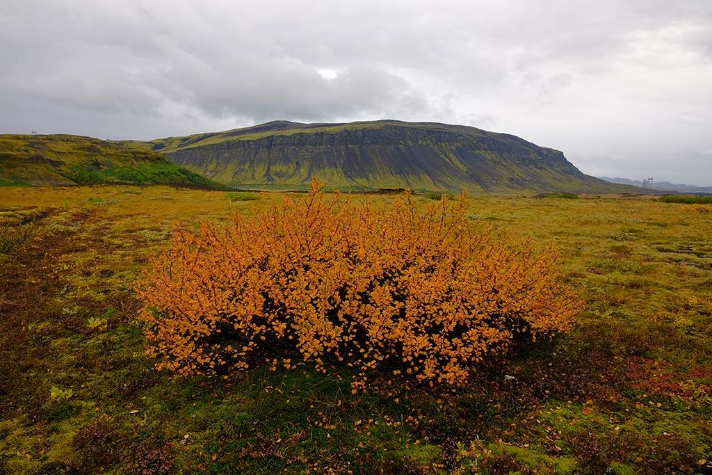Batı İzlanda; Snaefellsness Yarımadası'na Gidiş