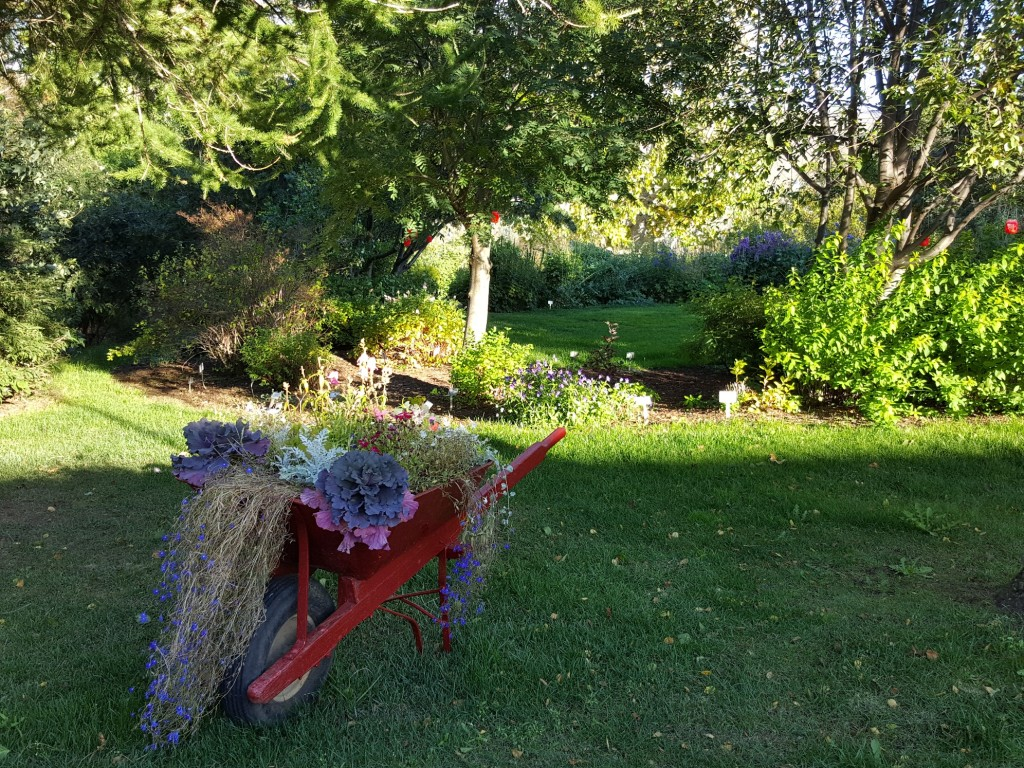 akureyri_public_park_and_botanic_garden in north iceland