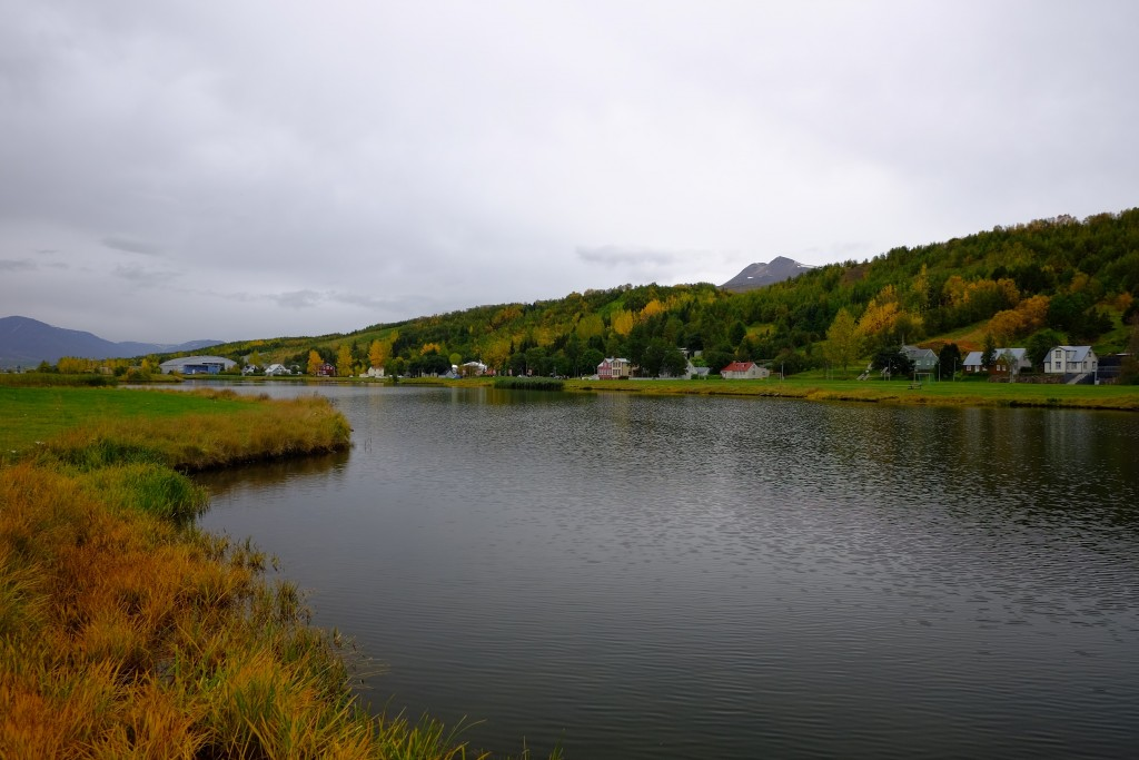 akureyri city view