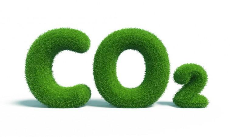 Sıfır Karbon Gezi